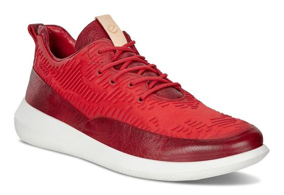 SCINAPSE Ladies Halo Lowcut Tie (CHILI RED/CHILI RED)