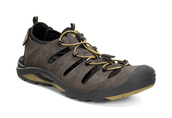 BIOM DELTA Mens Sandal (COFFEE/BLACK/DRIED TOBACCO)