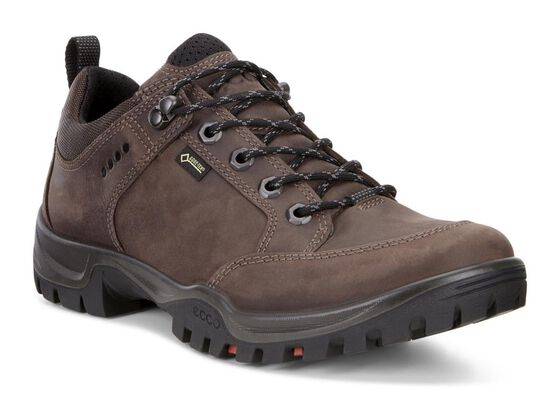 XPEDITION III Mens Lowcut GTX (MOCHA)
