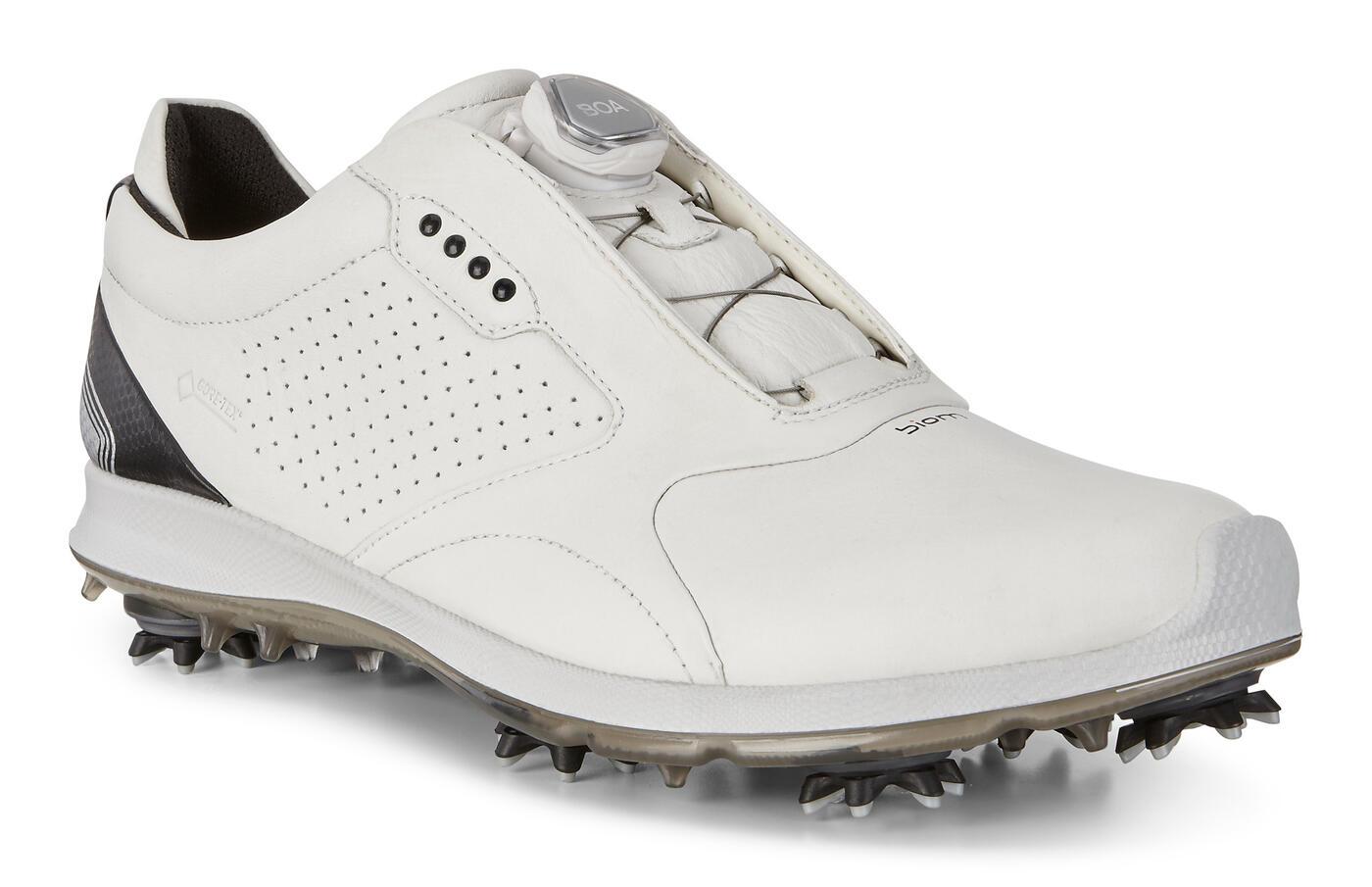 ECCO BIOM G2 Mens Golf BOA GTX